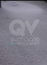 MALTEMPO - Grandine pioggia e vento nella nostra zona. Chicchi da 3 centimetri di diametro - FOTO - immagine 5