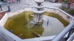 VENARIA - Degrado nelle aree private, scattano le lettere di intimazione: pulizie entro 1 mese - immagine 5