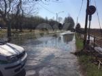 VENARIA - Problemi al canale irriguo della Dora: allagate via Don Sapino e corso Matteotti - immagine 6