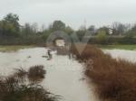 MALTEMPO - Rimane lallerta rossa. Monitorati fiumi, torrenti e guadi: preoccupano Ceronda e Stura - immagine 6