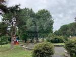 RIVOLI - Nuovo look per le aree verdi comunali: pulizia e taglio dellerba - immagine 6