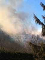 VAL DELLA TORRE - Incendio sui monti tra Brione e Val della Torre - immagine 10