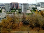 VENARIA - Degrado nelle aree private, scattano le lettere di intimazione: pulizie entro 1 mese - immagine 6