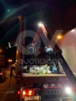 BORGARO - «Ci sono degli animali nei bidoni della plastica»: civich e carabinieri in via Santa Cristina - immagine 6