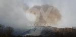 VAL DELLA TORRE - Incendio boschivo in Borgata Buffa: il piromane è tornato in azione? - immagine 7