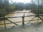 MALTEMPO - Rimane lallerta rossa. Monitorati fiumi, torrenti e guadi: preoccupano Ceronda e Stura - immagine 7