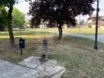 RIVOLI - Nuovo look per le aree verdi comunali: pulizia e taglio dellerba - immagine 7