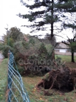 VENARIA - MALTEMPO: Parte la conta dei danni. Sopralluogo del sindaco in tutta la città - immagine 11