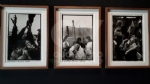 VENARIA - Le guerre immortalate negli scatti di Pellegrin nella mostra «UnAntologia» alla Reggia - FOTO - immagine 7
