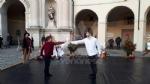 VENARIA - La danza contemporanea chiude le festività natalizie in città - immagine 7