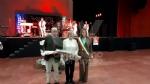 VENARIA - La città ha festeggiato le «nozze doro» di oltre 60 coppie venariesi - immagine 53