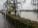 MALTEMPO - Evacuate alcune famiglie a Pianezza. Straripamenti di fiumi e strade chiuse - immagine 8