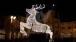 VENARIA - Il grande cervo in piazza Annunziata è stato illuminato: il Natale è iniziato in città - immagine 8