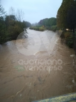 MALTEMPO - Evacuate alcune famiglie a Pianezza. Straripamenti di fiumi e strade chiuse - immagine 9