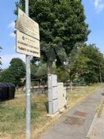 RIVOLI - Nuovo look per le aree verdi comunali: pulizia e taglio dellerba - immagine 9