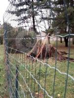 VENARIA - MALTEMPO: Parte la conta dei danni. Sopralluogo del sindaco in tutta la città - immagine 13