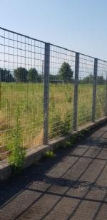 VENARIA - Muri pericolanti ed erba alta: degrado nel campo «naturale» del Don Mosso - immagine 9