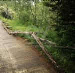 VENARIA - Il degrado di Corona Verde: tra atti vandalici, scarsa manutenzione e costruzioni mai finite - immagine 9