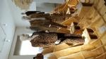 CULTURA - In Reggia domani mattina apre i battenti la mostra di moda «Jungle» - immagine 10