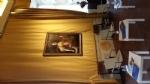 CULTURA - In Reggia domani mattina apre i battenti la mostra di moda «Jungle» - immagine 1