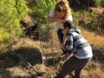 VAL DELLA TORRE - «Rimboschiamoci le maniche»: piantati decine di alberi in borgata Moschette - immagine 1