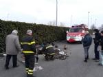 CASELLE - Tre cani incastrati in un tubo rischiano di morire: salvati dai vigili del fuoco - FOTO - immagine 1