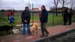 CASELLE - Altre tre aree cani in città? - immagine 1
