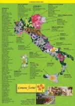 ROBASSOMERO - Il paese partecipa al concorso nazionale «Comuni Fioriti» - immagine 1