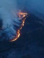 VAL DELLA TORRE - Incendio boschivo. Il sindaco: «la situazione per ora è sotto controllo» - immagine 1