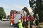VENARIA - Una biscia nellarea commerciale di corso Garibaldi: salvata dai vigili del fuoco - immagine 1