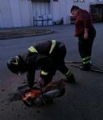 CASELLE - Tre cani incastrati in un tubo rischiano di morire: salvati dai vigili del fuoco - FOTO - immagine 2