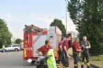 VENARIA - Una biscia nellarea commerciale di corso Garibaldi: salvata dai vigili del fuoco - immagine 2
