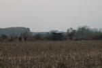 CHIVASSO-VARISELLA - Pastori uccisi a bastonate e abbandonati in un campo: caccia agli assassini - immagine 2