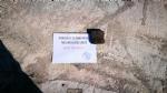 VENARIA - Il Pd attacca lamministrazione su buche e manutenzioni: «Sindaco, #AsfaltaUnaBuca» - immagine 2