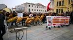 VENARIA G7 - IL CORTEO ENTRA IN CITTA: TENSIONE ALTISSIMA IN CENTRO - FOTO E VIDEO - immagine 12