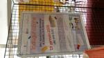 DRUENTO-SAN GILLIO-GIVOLETTO: Successo per la mostra «La scuola, il nostro... tesoro» - immagine 11