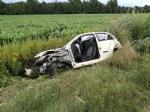 VENARIA REALE - Incidente mortale sulla Sp1 della Mandria: perde la vita una donna - FOTO e VIDEO - immagine 3