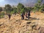 VAL DELLA TORRE - «Rimboschiamoci le maniche»: piantati decine di alberi in borgata Moschette - immagine 3