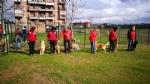 CASELLE - Altre tre aree cani in città? - immagine 3