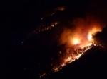 VAL DELLA TORRE - Incendio boschivo. Il sindaco: «la situazione per ora è sotto controllo» - immagine 3