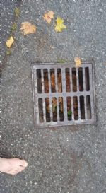 BORGARO - Tromba daria: danni ingenti in tutta la città - immagine 3