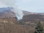 VAL DELLA TORRE-CASELETTE - Incendio boschivo: Aib e pompieri in azione per spegnerlo - immagine 4