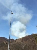 VAL DELLA TORRE-CASELETTE - Incendio boschivo: Aib e pompieri in azione per spegnerlo - immagine 5