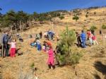 VAL DELLA TORRE - «Rimboschiamoci le maniche»: piantati decine di alberi in borgata Moschette - immagine 6
