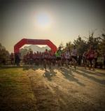 """VENARIA - Migliaia di """"runners"""" in città per ledizione 2017 de «Una Corsa da Re» - immagine 16"""