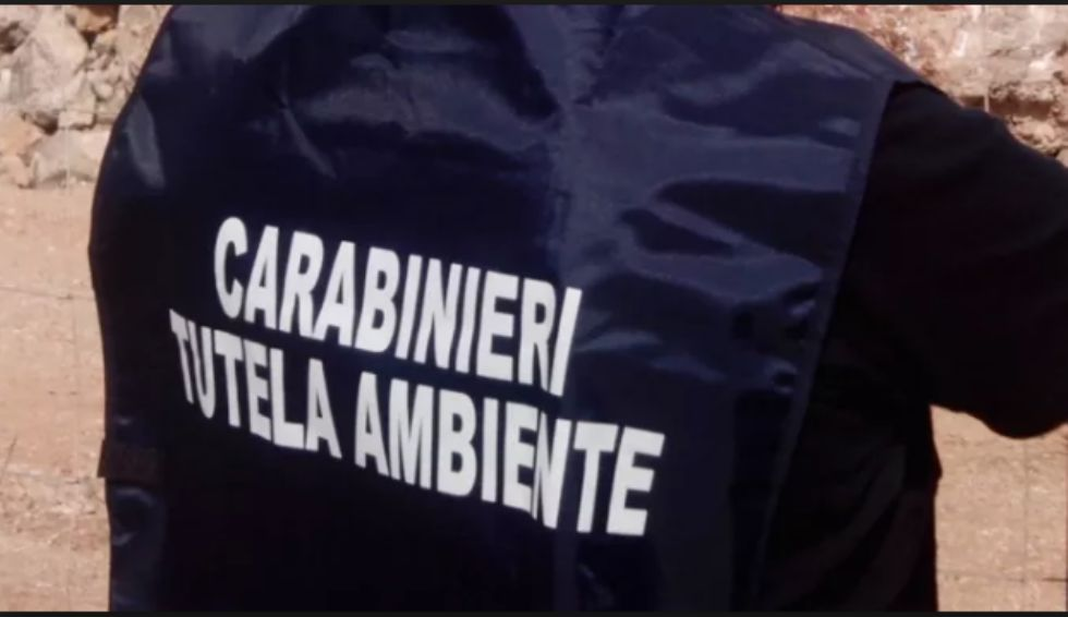 BORGARO - Tonnellate di plastica stoccate illecitamente in un capannone: sequestro dei carabinieri