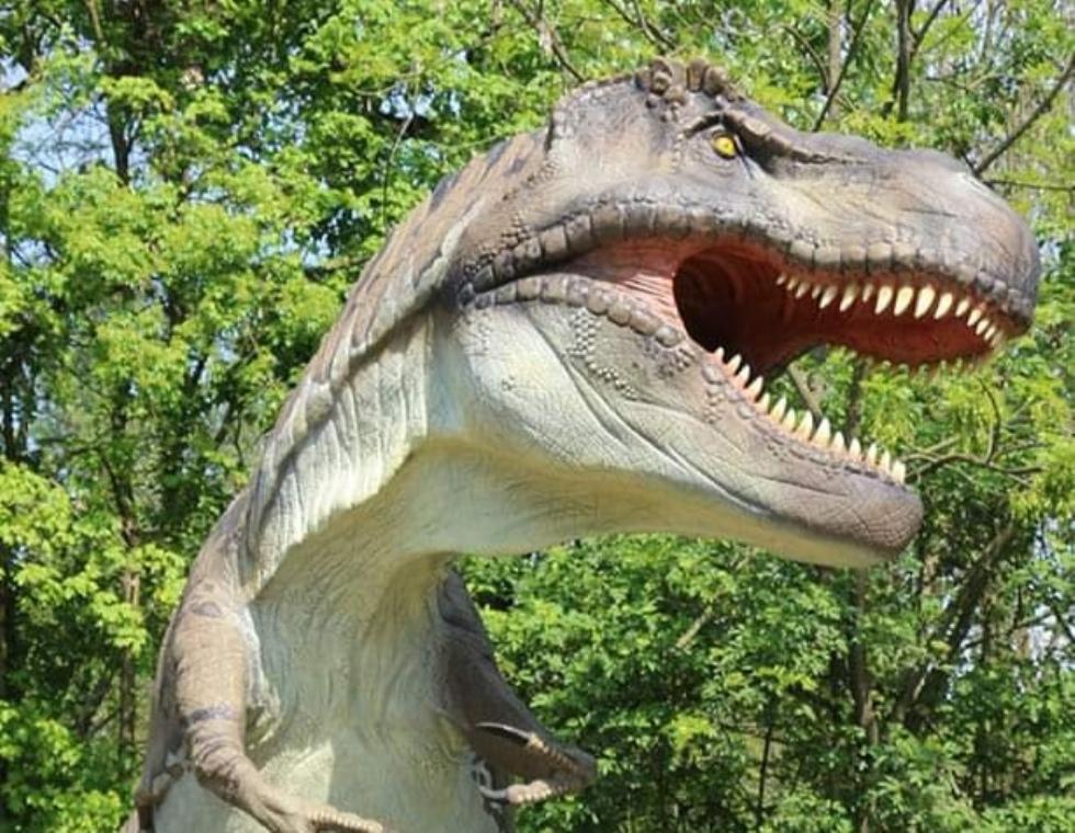 BORGARO - Al Chico Mendes la mostra «Dinosaurs Park»: dinosauri meccanici a dimensione reale