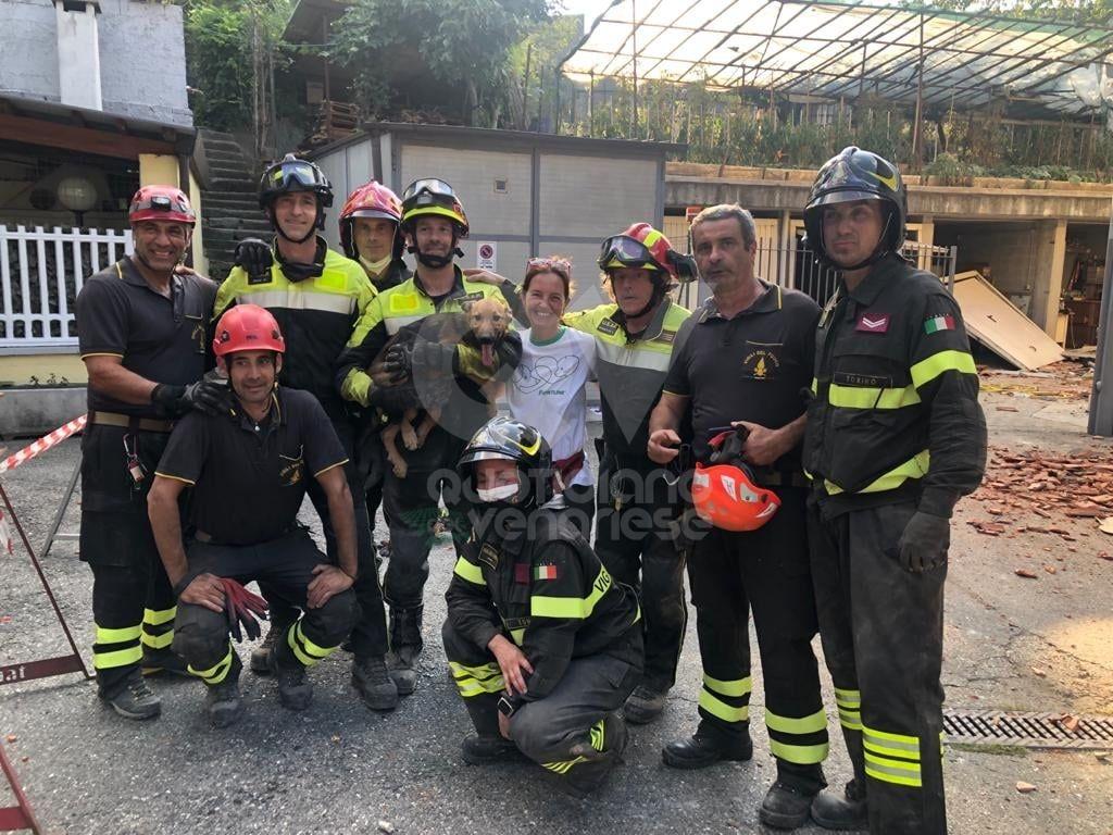 CROLLO PALAZZINA A TORINO - Il cane Ettore è stato trovato vivo dai vigili del fuoco - FOTO