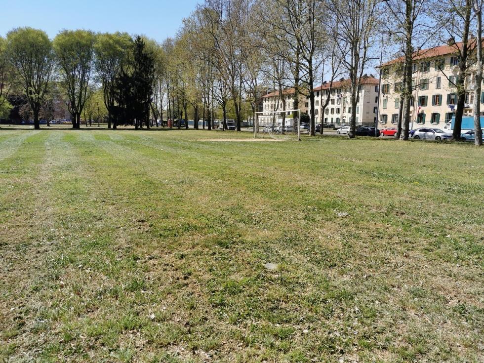 VENARIA - Partito il taglio dell'erba in città: le zone fatte e quelle future
